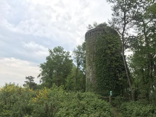 A round stone tower, perhaps thirty feet high, is covered in ivy; there even appear to be small trees growing from its top.  A narrow path leads through brush towards the trail, blocked by a simple wooden fence with a green sign.  Trees grow to either side of the tower and behind it; the sky is overcast.