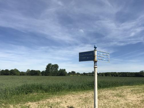 """To the north is a metal pole with metal crossroad signs.  Behind it is cleared ground, and then a broad green field, bounded by rows of trees.  Pointing away to the left is """"0.4k Le Petit Larre"""", near to the right is """"St. Rigomer 2.3k"""", near to the left is """"2.9k Champfleur"""", and away to the right are """"Houssemaine 0.8k"""" and """"Lignieres 6.2k"""".  (The typography is such that for 0.4k, the sign reads 0.4 with a superscript K above the decimal.)  The post has a small placard reading """"Dept. de la Sarthe"""".  The sky is blue with wispy clouds."""