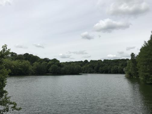 A large pond is to the northwest, ringed by dense trees right down to the waterline.  The sky is a high overcast, with a distinct handful of lower clouds.