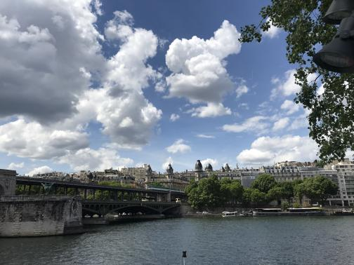 A river runs across the bottom of the photo.  From the left, a low bridge crosses it; a Métro train is crossing it.  Where it reaches the far bank, a set of buildings has matching turrets with domes reminiscent of dark grey eggs.  A variety of other buildings can be seen to either side and beyond.  Across the river, several trees grow on the bank above a handful of docked boats.  The sky is partly cloudy.