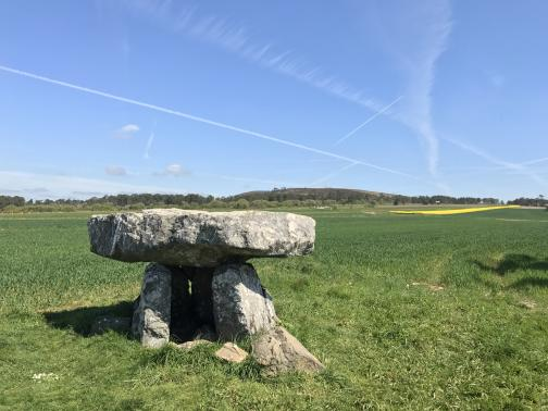 A dolmen sits in a green field.  It consists of a large, heavy stone slab, held up by several shorter slabs set in the ground.  The sky above is blue with a few contrails; a yellow field is in the far distance.