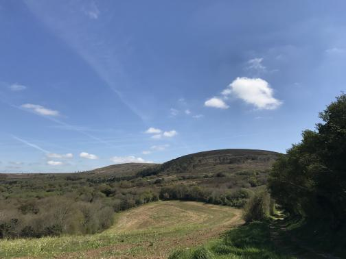 Under a blue sky with few clouds, on the horizon to the east, is a gently rounded peak, slightly to the right of center.  The slope has scattered trees and brushland extending down to the foreground, where a cleared field is surrounded by trees.  The trail is on the right, shadowed by more trees, leading in the general directon of the peak.