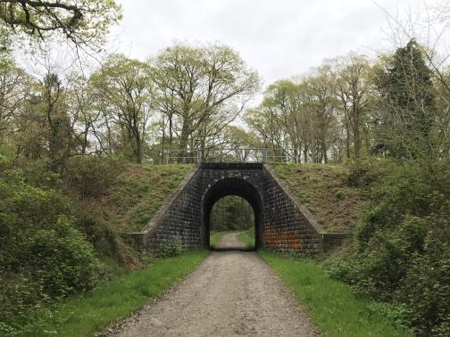 A wide dirt track heads directly ahead, to the east-northeast, through an arched tunnel, passing under a railroad line.  Brush lines the track on this side of the line, and trees are visible beyond.