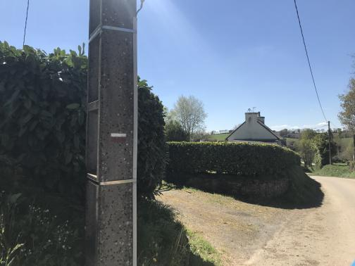 A paved road runs along the right side of the photo.  To its left, in the foreground, a concrete utility pole rises up, with a white-over-red trail marking painted on it.  Behind it, and further down the road, are hedges, and behind the farther hedge we can see the top of a building under blue skies.