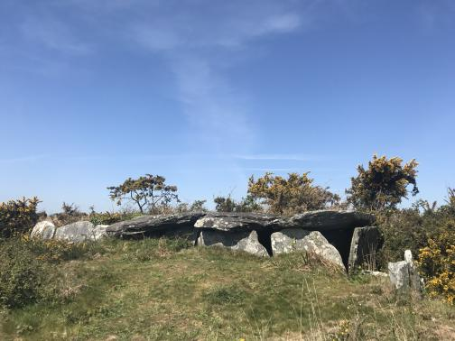 A row of large, crooked stone slabs, partially buried on end, is covered with more slabs, making a very low, long structure; it would barely be large enough to crawl through.  Grass leads to it, and beyond to the west is gorse and other brush.