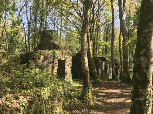 In a bright forest, a dirt trail heads to the northeast.  Alongside the trail are two or three huts made from thin slabs of stone.  Their doors and roofs are missing and vines are growing along the tops of the walls, but at least one has its chimney still easily-recognizable.