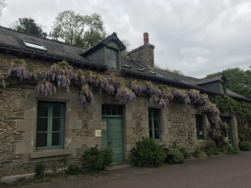 A stone lockkeeper's house, similar to others we've recently seen, opens directly on a paved walkway to the east-northeast.  A few small bushes grow immediately in front, while a wisteria vine climbs between the roofline and the door and windows.