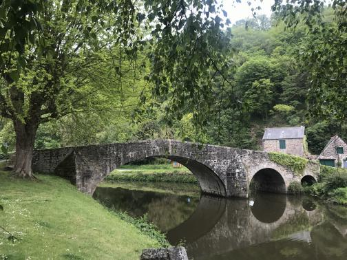 To the east, a low stone bridge arches over a small river; its smooth surface makes it difficult to distinguish from a canal.  The far end of the bridge has vines growing on it; beyond are two buildings made of the same stone.  Both banks are grassy; the near has a single tree leaning overhead, while the far side has a tree-covered slope above the buildings.