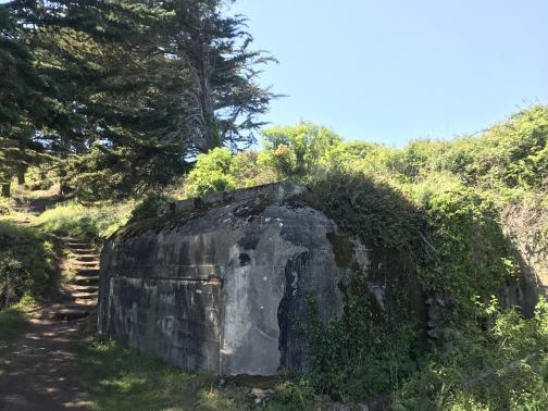 A dirt trail runs west past an old concrete military pillbox, overgrown with vines and moss.  Behind the pillbox is brush on an ascending slope.  The trail leads to a rough series of stairs leading up that same slope, curving away to the left past some trees.